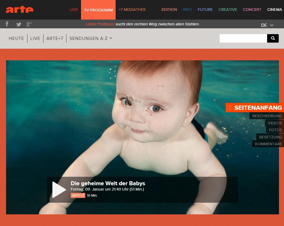 Die Geheime Welt Der Babys Arte