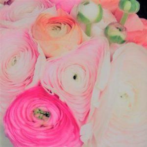 Strauß Blumen
